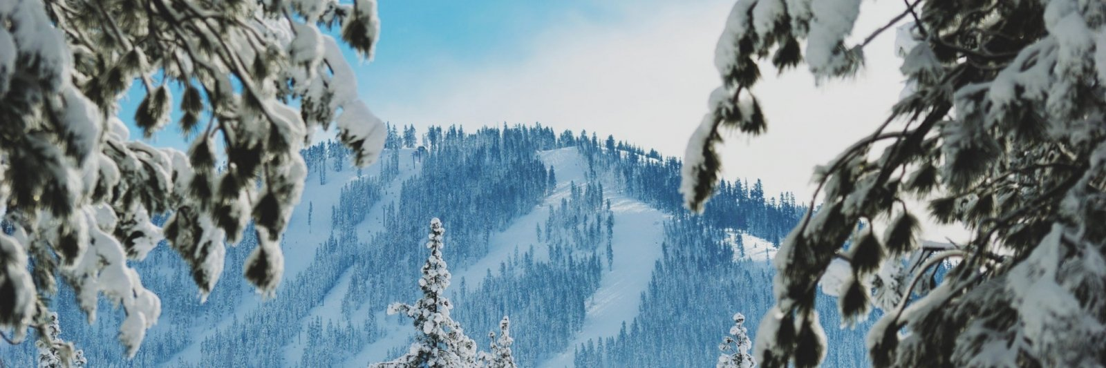 Snow covered ski slopes in winter seen from a distance.