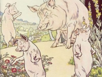 The three little pigs can be used as an analogy for many small business owners today.